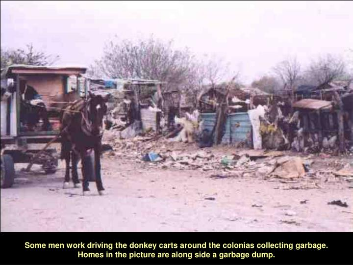 Some men work driving the donkey carts around the colonias collecting garbage. Homes in the picture are along side a garbage dump.