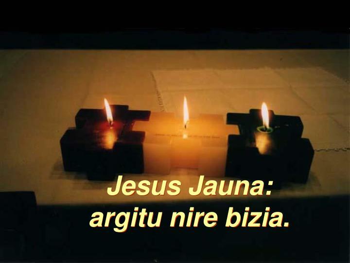 Jesus Jauna: