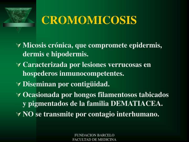 CROMOMICOSIS