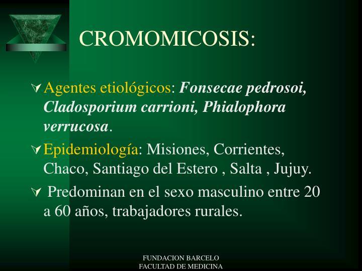 CROMOMICOSIS: