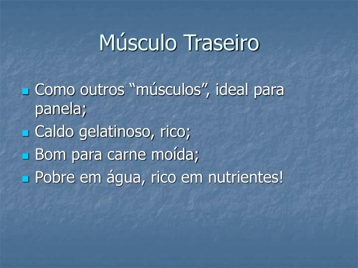 Músculo Traseiro