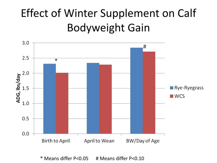 Effect of Winter Supplement on Calf Bodyweight Gain