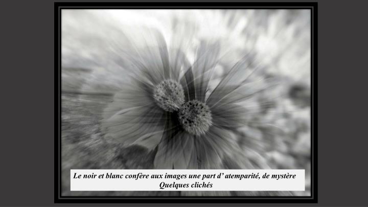 Le noir et blanc confère aux images une part d' atemparité, de mystère