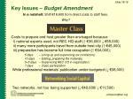 key issues budget amendment