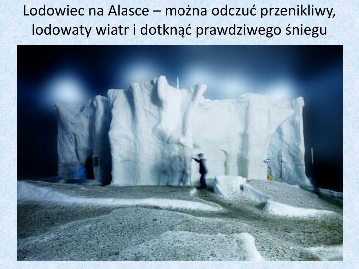 Lodowiec na Alasce – można odczuć przenikliwy, lodowaty wiatr i dotknąć prawdziwego śniegu