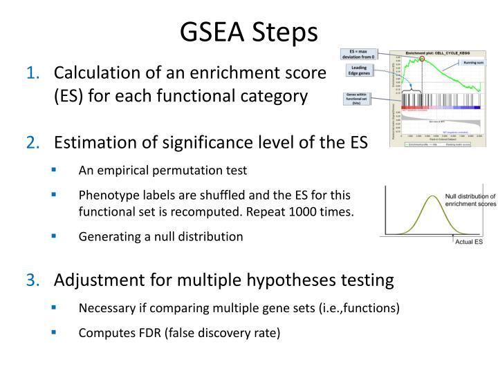 GSEA Steps