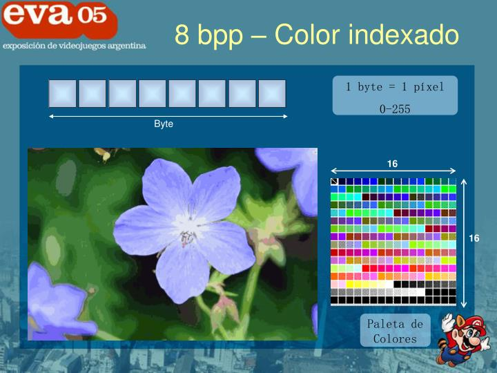 8 bpp – Color indexado
