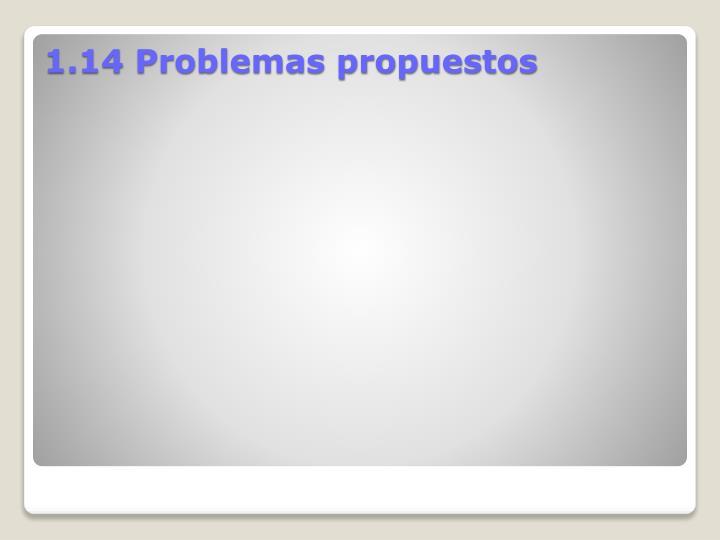 1.14 Problemas propuestos