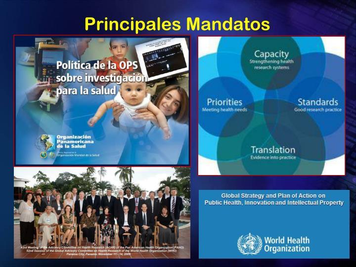Principales Mandatos