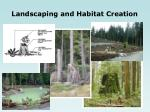 landscaping and habitat creation