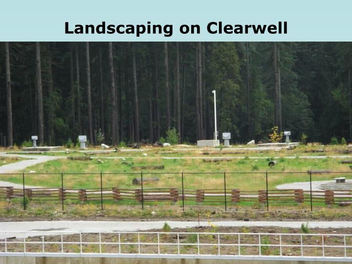 Landscaping on Clearwell