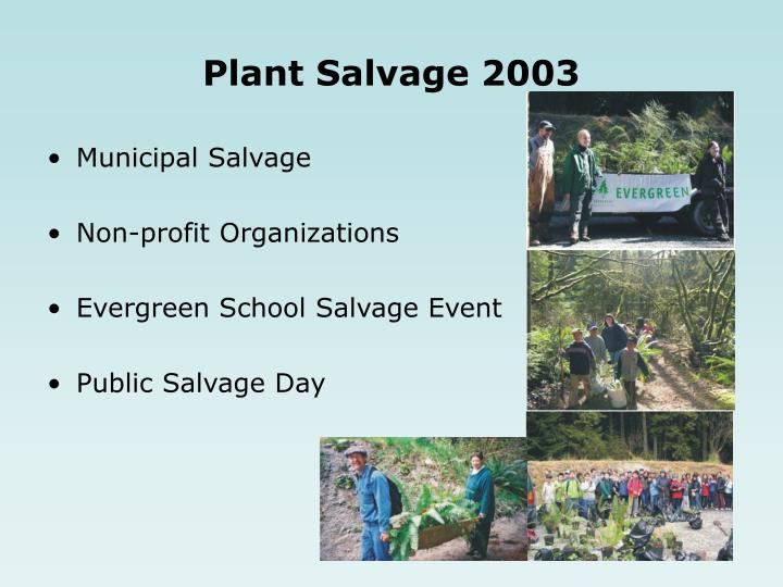 Plant Salvage 2003