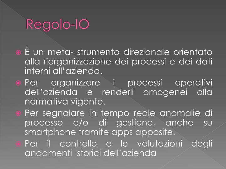Regolo-IO