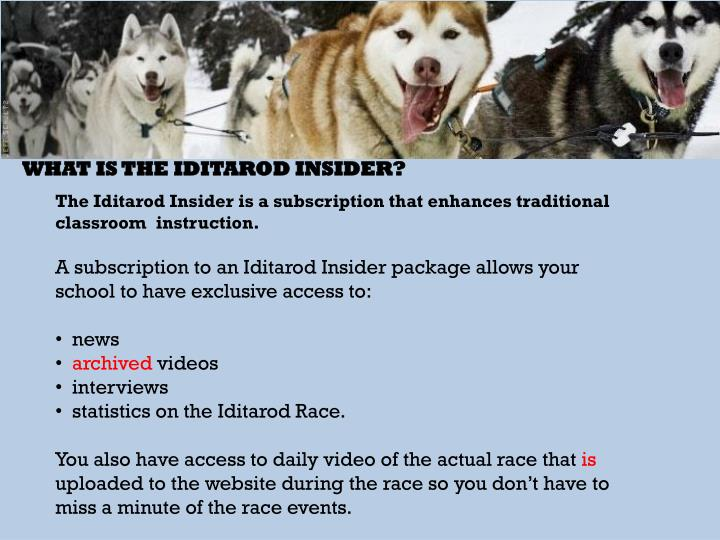 What is the Iditarod Insider?