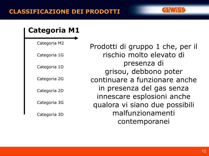 Categoria M2