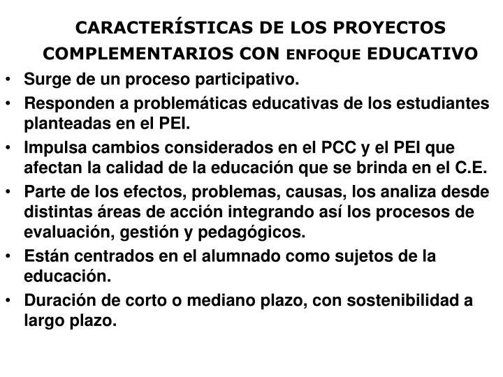 CARACTERÍSTICAS DE LOS PROYECTOS
