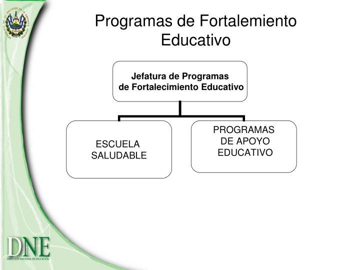 Programas de Fortalemiento  Educativo