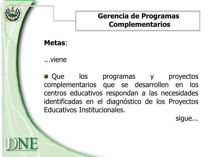 Gerencia de Programas