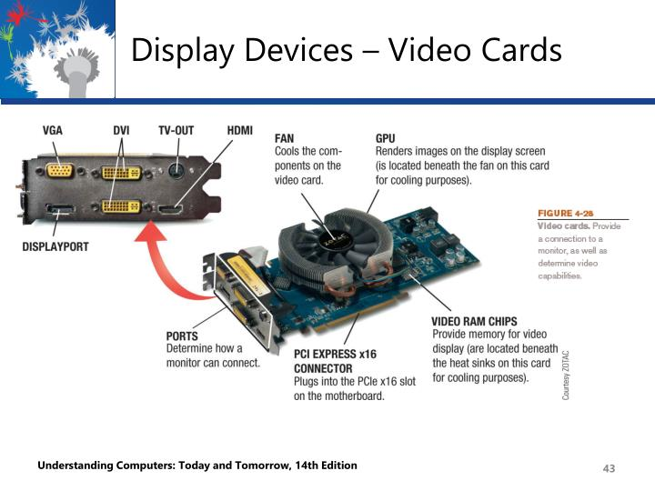 Display Devices – Video Cards