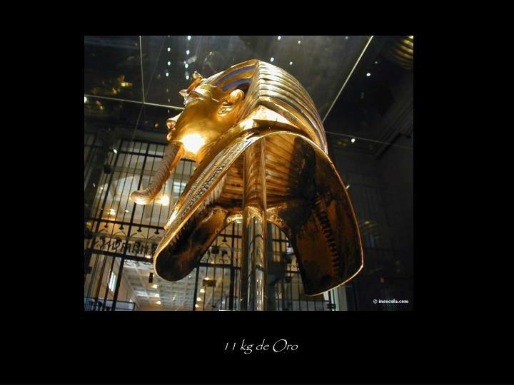 11 kg de Oro