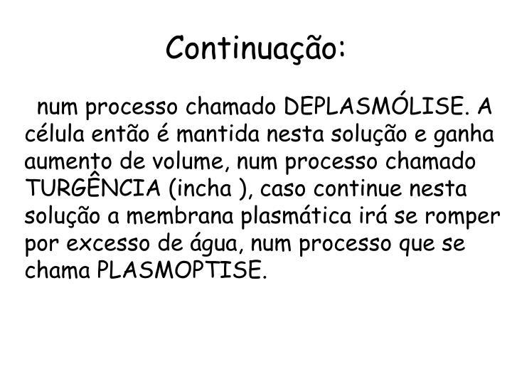 Continuação: