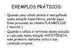 exemplos pr ticos