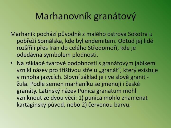 Marhanovník granátový