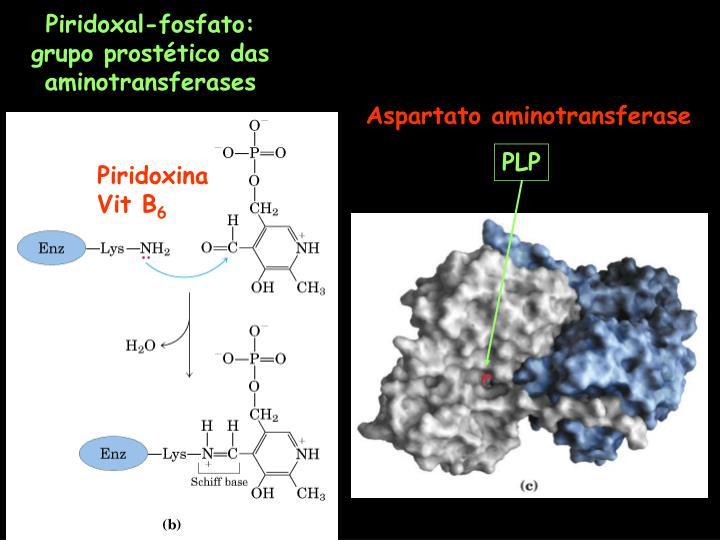 Piridoxal-fosfato: