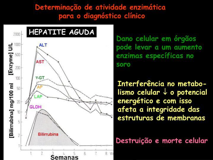 HEPATITE AGUDA