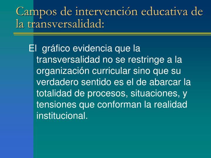 Campos de intervención educativa de la transversalidad: