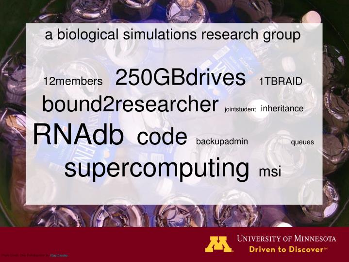 a biological simulations research group