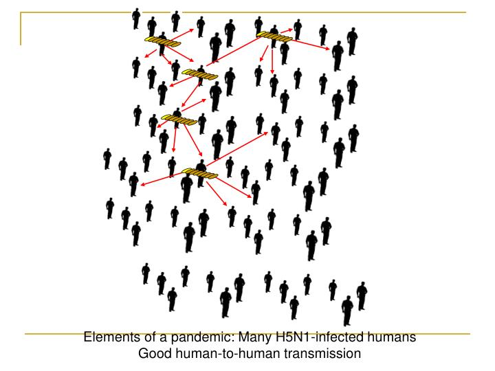 Elements of a pandemic: Many H5N1-infected humans