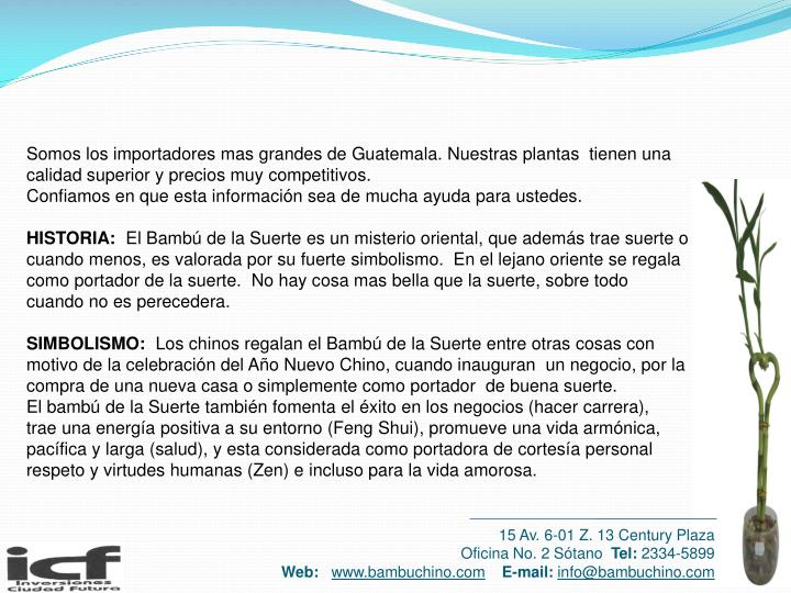 Somos los importadores mas grandes de Guatemala. Nuestras plantas  tienen una calidad superior y precios muy competitivos.