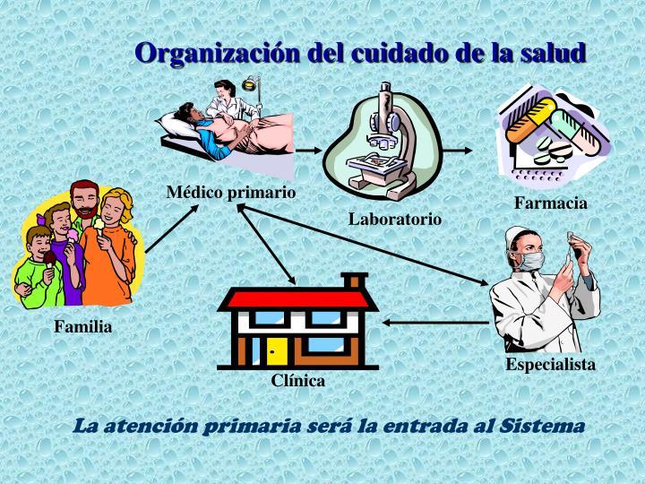 Médico primario