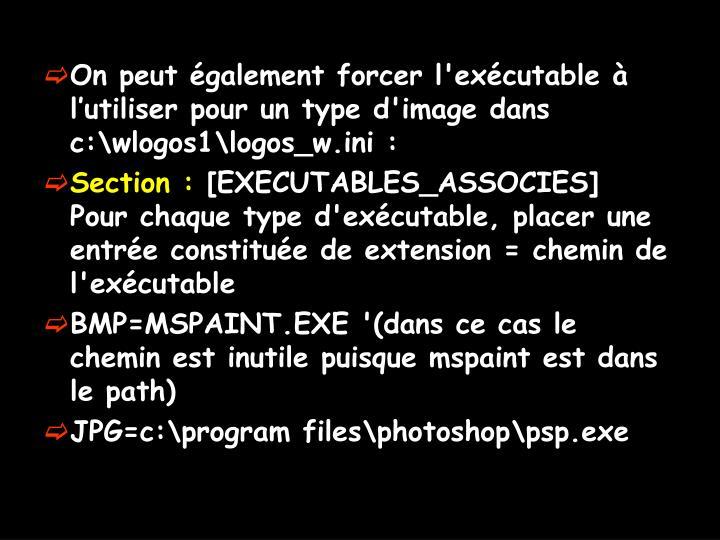 On peut également forcer l'exécutable à l'utiliser pour un type d'image dans c:\wlogos1\logos_w.ini :