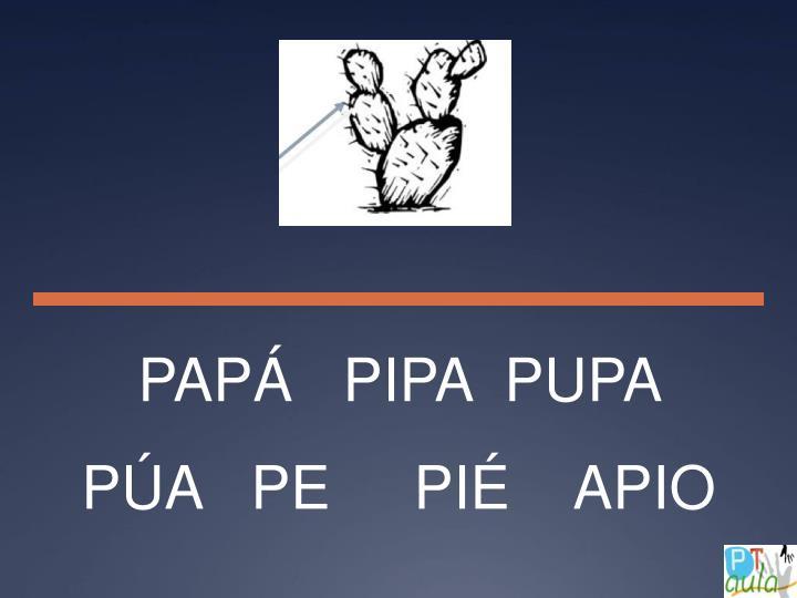 PAPÁ   PIPA  PUPA