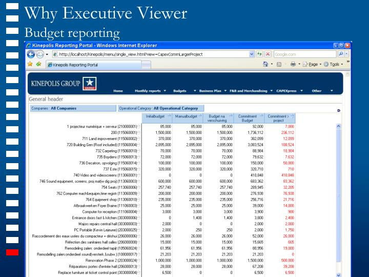 Why Executive Viewer