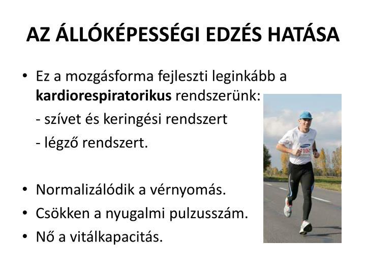 AZ ÁLLÓKÉPESSÉGI EDZÉS HATÁSA