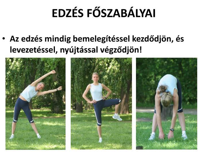 EDZÉS FŐSZABÁLYAI