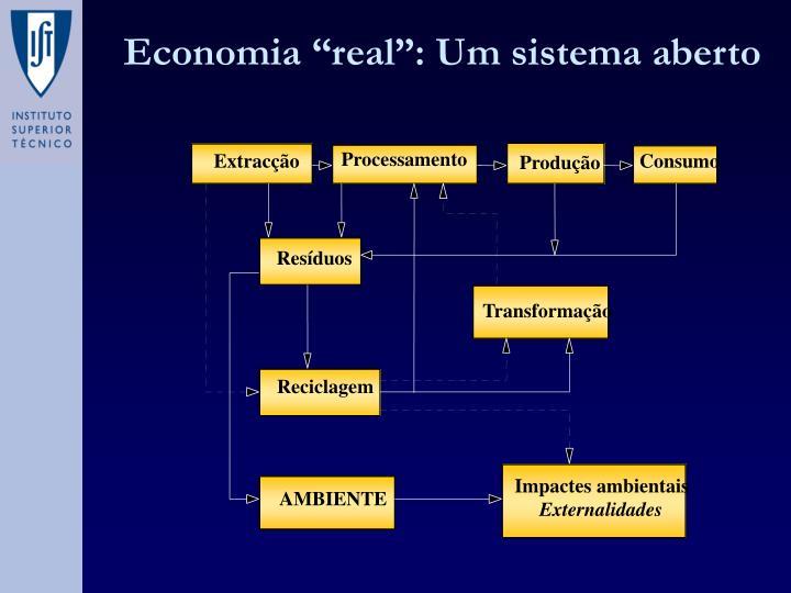 """Economia """"real"""": Um sistema aberto"""