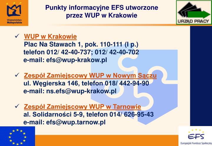Punkty informacyjne EFS utworzone