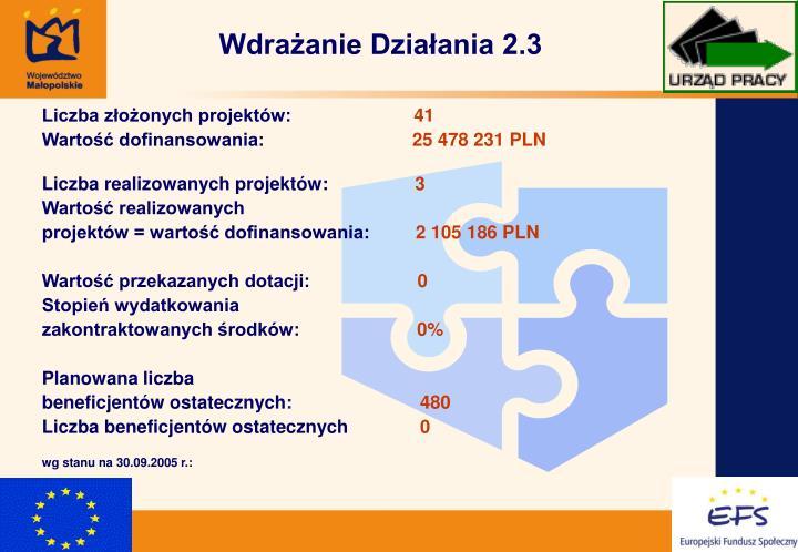 Wdrażanie Działania 2.3