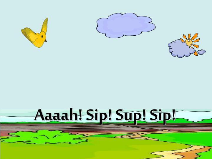 Aaaah! Sip! Sup! Sip!