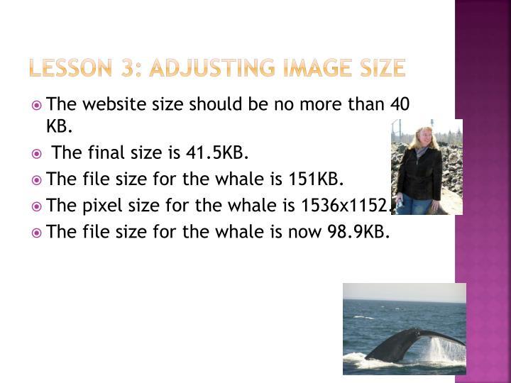 Lesson 3: Adjusting image size