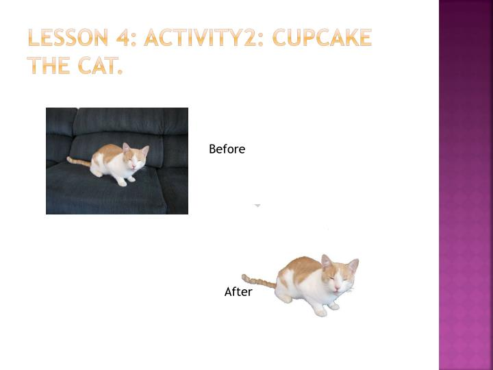 Lesson 4: activity2: Cupcake the cat.