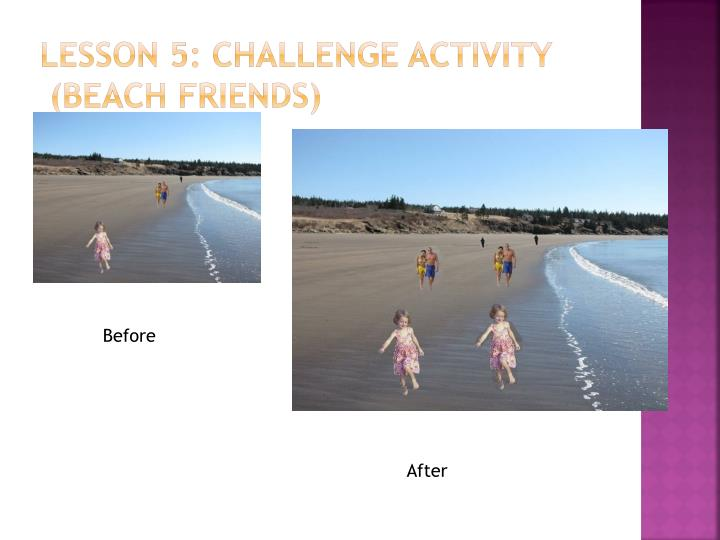 Lesson 5: Challenge Activity