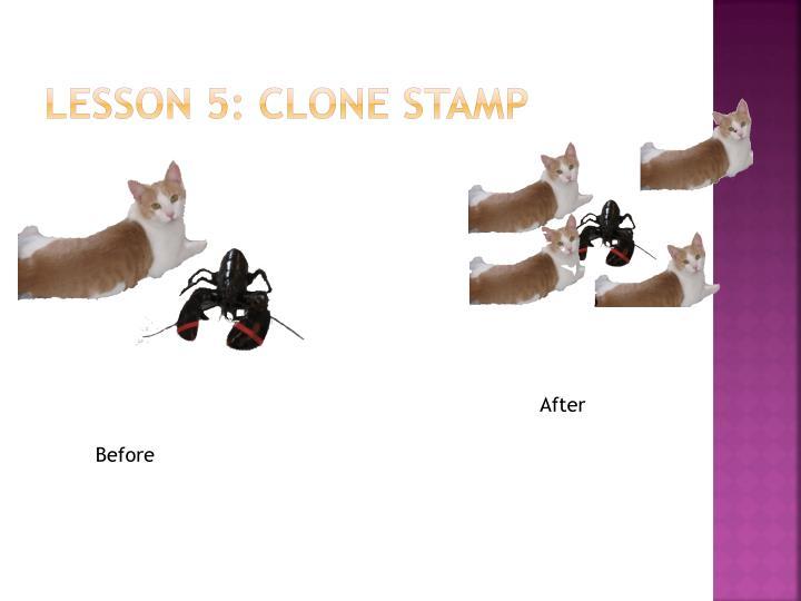 Lesson 5: Clone stamp
