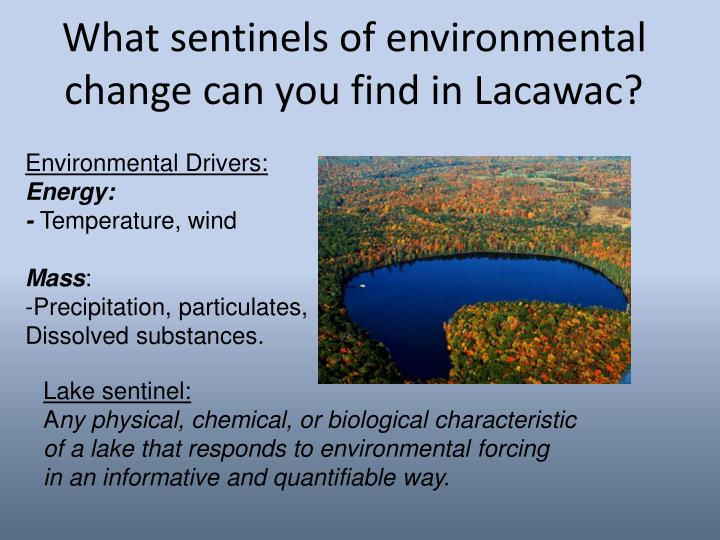 What sentinels of environmental change can you find in Lacawac?