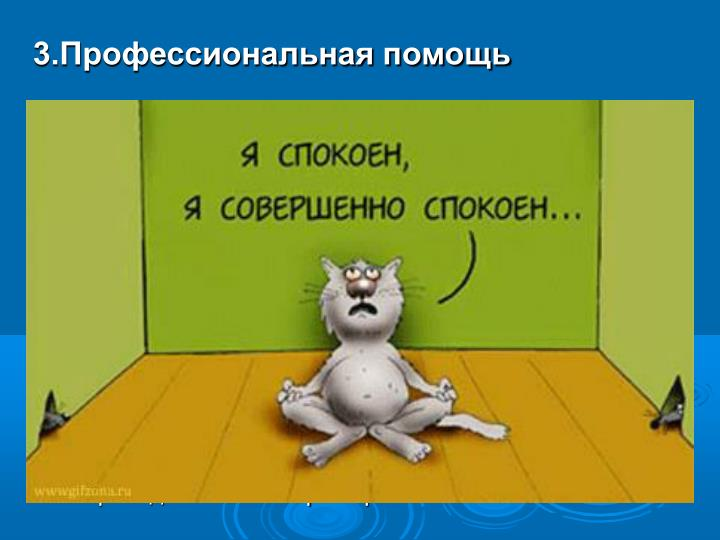 3.Профессиональная помощь