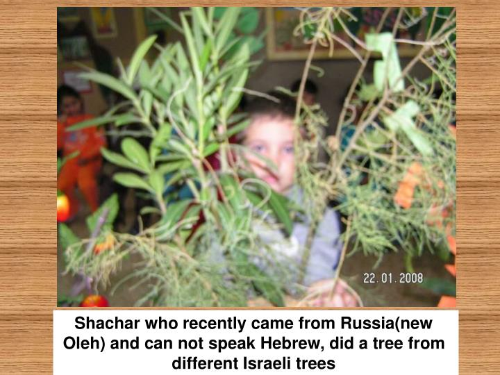 Shachar who recently came from Russia(new Oleh) and can not speak Hebrew, did a tree from different Israeli trees